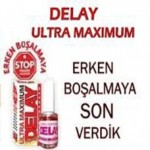 Delay Maximum Geciktirici